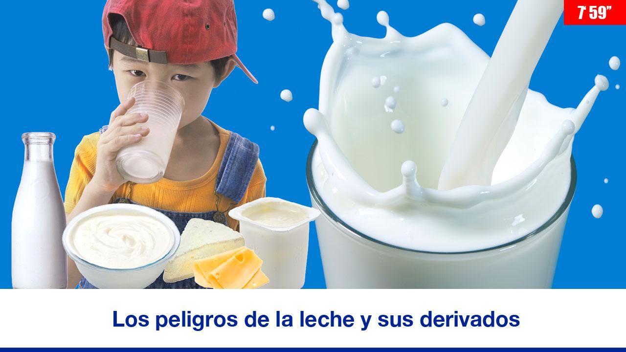 Los peligros de la leche y sus derivados