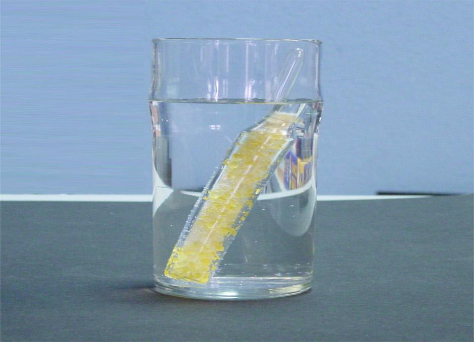 menu para evitar acido urico medicamentos naturales para la enfermedad dela gota el pescado azul es bueno para el acido urico