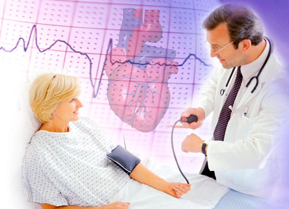 El corazón, mucho más que una bomba de sangre — DSalud