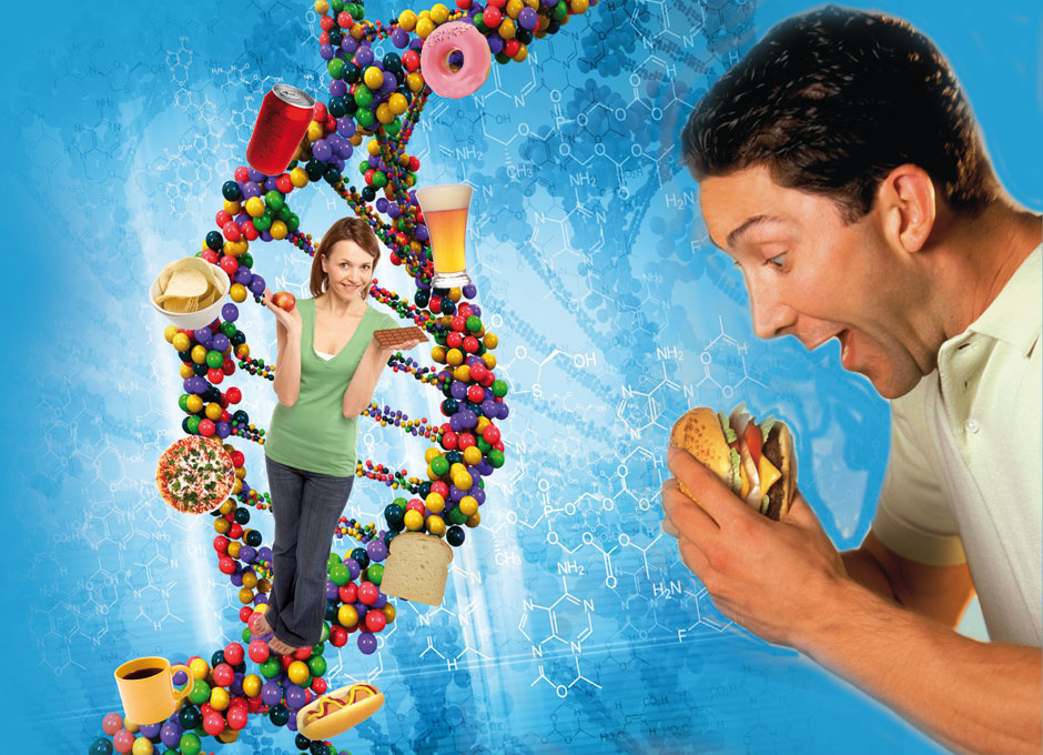 DIETA-OCCIDENTAL